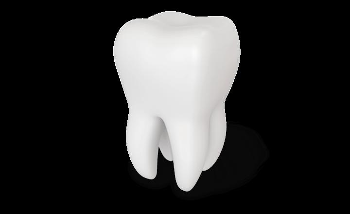 Select Dental